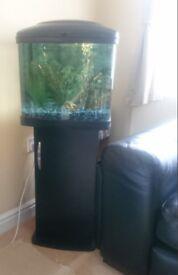 Full working fish tank