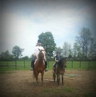 Horse Back Ridging Lessons @ Apple Ridge Farm