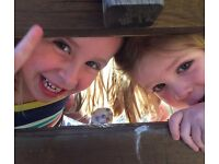 Seeking experienced aupair to help look after our two girls - to start end May/June