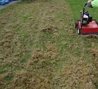service de déchaumage de pelouse a bon prix