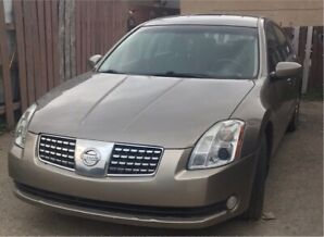 Nissan Maxima Low Milage