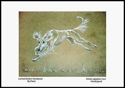 Flying Saluki - Limited Edition Print - 'Jo Constant'