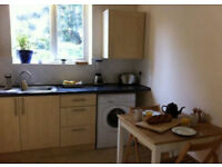 1 bed room flat for short term - max a month