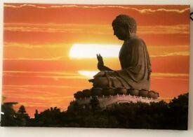 Beautiful Budda picture
