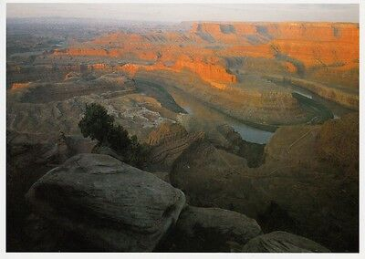 Grand Circle : DEAD HORSE POINT STATE PARK Postcard - photo by Jeff Gnass!