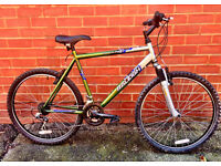 Raleigh Manta Ray Mountain Bike Manufactured by Raleigh UK