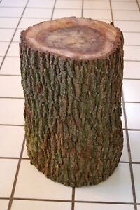Wanted: 2 TREE STUMPS