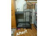 Medium parrot cage