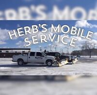 Snow Removal and Salting Service