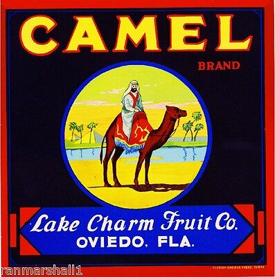 Oviedo Florida Camel Orange Citrus Fruit Crate Label Art Print