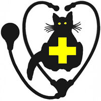 Veterinary Technician for Cat Hospital in Northern Ontario