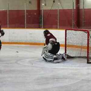 if you need a sub goalie Edmonton Edmonton Area image 5