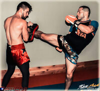Muay Thai / MMA Expert Instructor - Single & Small Groups