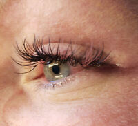 SPRING HAS SPRUNG-Coloured Lashes by Lakeshore Lashes, Sylvan L