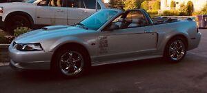 Mustang GT V8 4.6l 5 speed manual