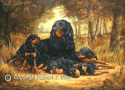 Gordon Setter limited edition print by Robert J. May
