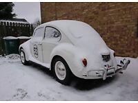 Vw beetle US spec rear *bumper* for sale (Not the car)