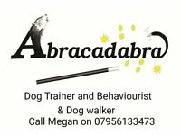 Abracadabra dog walking service