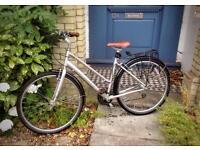 Ladies Specialized Bike