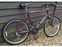 RALEIGH NITRO MOUNTAIN BIKE/ BICYCLE