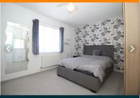 A Double Room Available in Very Beautiful in 3 bedroom