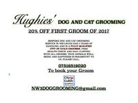 Hughies' NW Dog and Cat grooming