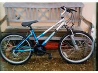 Girls Emmel bike