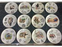 Wedgwood Birdwatchers Collection