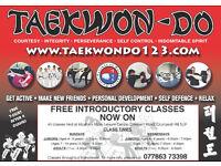 TAEKWONDO FREE INTRODUCTORY CLASSES NOW ON