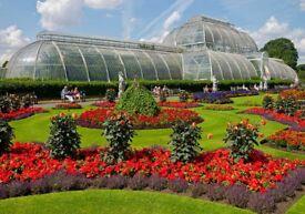 3 adult tickets to Kew Garden