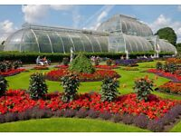 3 adult tickets to Kew Garden