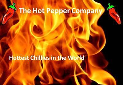 The Hot Pepper Company