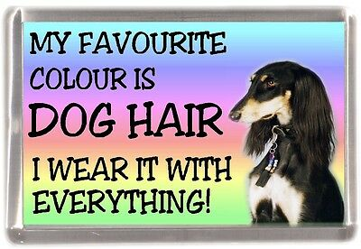 "Saluki Dog Fridge Magnet ""My Favourite Colour is Dog Hair"" by Starprint"