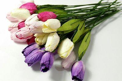 10 of Tulip Mulberry Paper Flower Scrapbooking Card Crafts Wedding DIY 1.2cm. (Paper Flower Crafts)