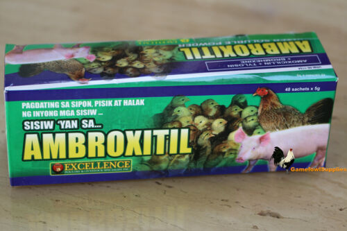 Ambroxitil (FULL BOX - 48 Packs) Poultry Supplies - AntiBacterial/AntiInfective