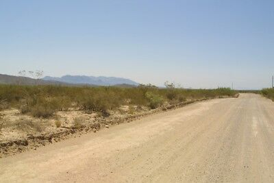 LAND FOR SALE 60 + ACRES TEXAS LAND TERM AUCTION!