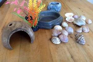 Hermit Crab Tank and Accessories Miami Gold Coast South Preview