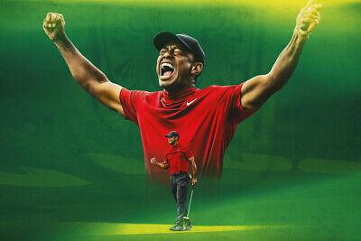 Tiger Woods Win PGA Golfer Art Wall Indoor Room Outdoor Poster - POSTER 24x36