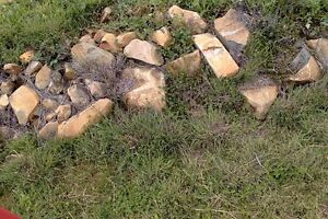 Free garden feature rocks. Pickup from Tintinhul Tamworth Tamworth City Preview