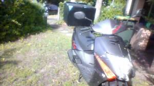 selling honda lead 2008 cheap as !! With 4 months rego Daceyville Botany Bay Area Preview