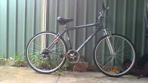 Bike Bicycle Mens Hybrid Cruiser Unisex Marsfield Ryde Area Preview