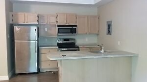 DOWNTOWN NEWLY RENOVATED 2 BEDROOM