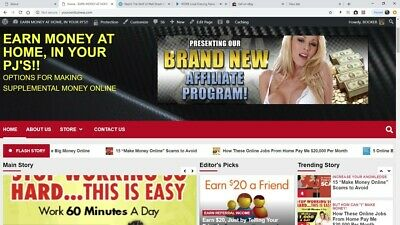 Amazing Work At Home Website For Sale Internet Business Money Making