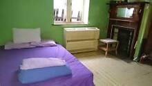 Friendly house with share room in large house 1 min to beach Bondi Beach Eastern Suburbs Preview