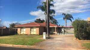 Brick Veneer House in East Dubbo Dubbo Dubbo Area Preview