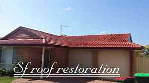 Roof painting driveway painting  (free quote All over Sydney ) Hillsdale Botany Bay Area Preview