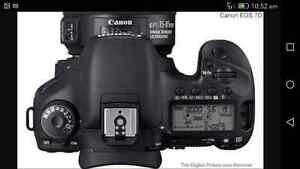 Canon D7 eos Bradbury Campbelltown Area Preview