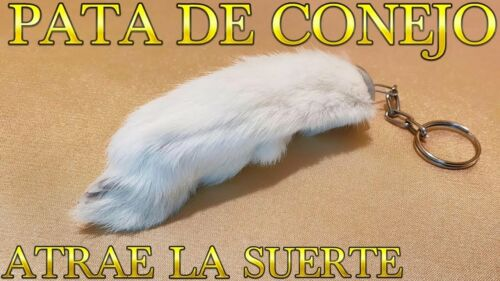 PATA DE CONEJO 100% REAL AMULETO DE LA BUENA SUERTE LLAVERO TRAIDO DE MEXICO