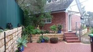 Granny Flat  Studio  Student Rent in Burnside South Australia Burnside Burnside Area Preview