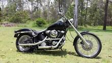 Harley Davidson Softail Custom (FXSTS) Greenbank Logan Area Preview